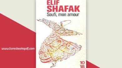 Photo de Télécharger Soufi, mon amour pdf gratuit